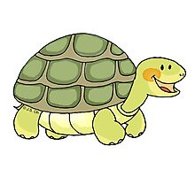 Cute and funny turtle Photographic Print