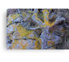 Wooden Hand Canvas Print