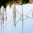 Abstract Reeds a Triangular Reflection by Derek McMorrine