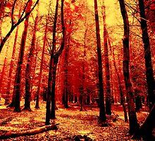 Forest heat by JinzhaBloodrose