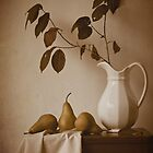 Pears and White Pitcher by Colleen Farrell