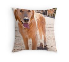 Smiles in Fur Throw Pillow