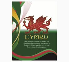Saint David's Day T -Shirt - Cymru by Moonlake