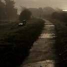 Man in the Mist by TanyaDuffy