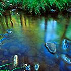 Carnarvon Creek reflections, Carnarvon Gorge National Park by Robert Ashdown