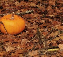 I Tossed a Pumpkin into the Woods by Patty Gross