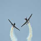 Russian Roolettes Crossover 1, Maitland Airshow 2015 by muz2142