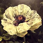 Contemporary Flower Paintings by Jen Manning  by Jen  Manning