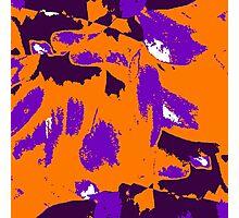 Orange Tango Photographic Print