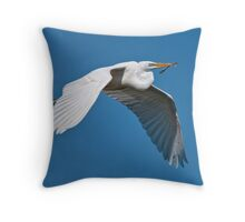 A Memento Throw Pillow