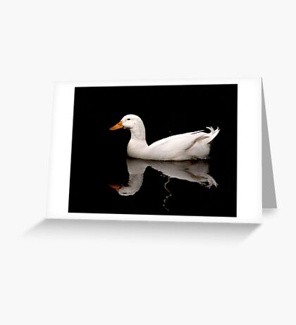 A Beauty  Greeting Card