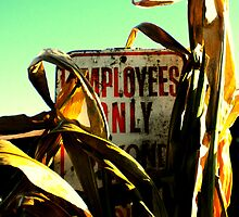 employees only by schadenfreude