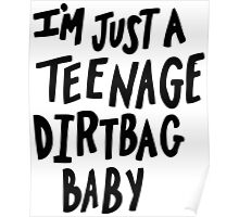 I'm just a teenage dirtbag baby Poster