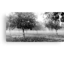 Ominous Fog Canvas Print