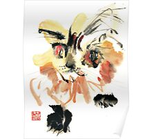 Yellow Fluffy Cat Poster