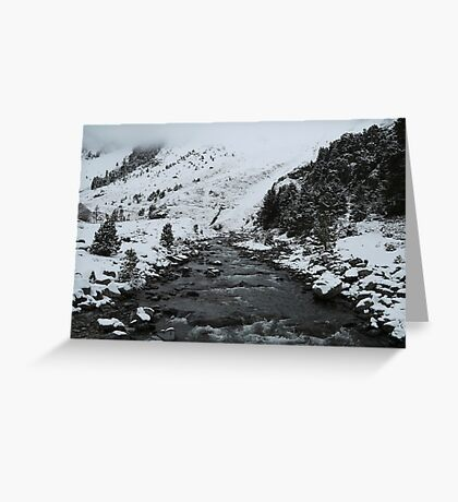 Life in Greyscale Greeting Card