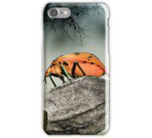 Orange stink bug 001 iPhone Case/Skin