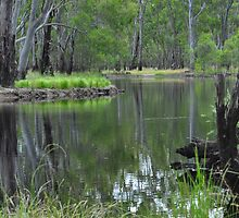 Beautiful Barmah by Geoff Beck
