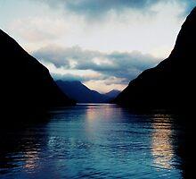 new zealand, doubtful sound overnight boat cruise :) by trinitywilson