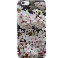 Petals of Pure White iPhone Case/Skin