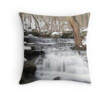 Winter at Colllins Creek Throw Pillow