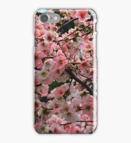 Pretty in Peach 2 iPhone Case/Skin