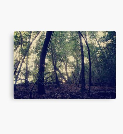 When You're Lost Canvas Print