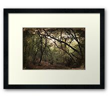 If You Want To Cry Framed Print