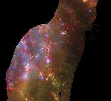 Kitten Space by GeeksWhoGo