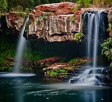 Fern Pool Falls by Jan Fijolek