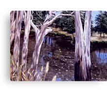 Goulburn River Canvas Print