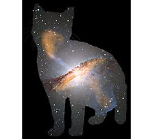 Cat Space Photographic Print