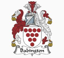 Coat of arms (family crest) for last-name or surname Babington . Heraldry banner for your name. by rita24