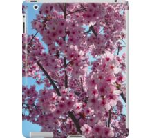 Blossoms up Close 4 iPad Case/Skin