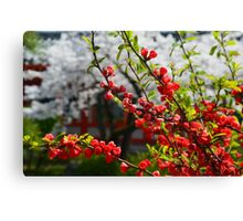 Flowers in Red Canvas Print