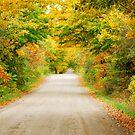 Autumn Splendor by Sue Ratcliffe