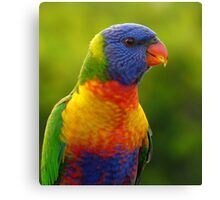 Colours - A Huge Display Canvas Print