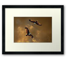 The Feeding Circle Framed Print