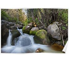 Bell's Canyon River Poster