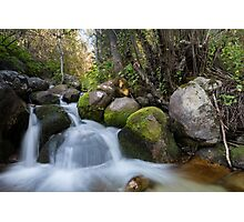Bell's Canyon River Photographic Print