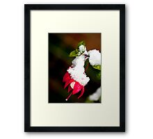 Out of Season Framed Print
