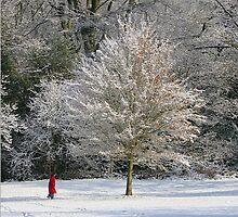 The Red Coat by John Dalkin