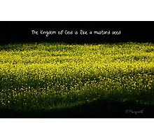 Mustard Field Photographic Print