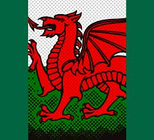 Welsh Dragon Unisex T-Shirt