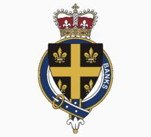 Coat of arms (family crest) for last-name or surname Banks (England) . Heraldry banner for your name. by rita24