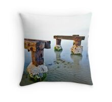 into the nowhere Throw Pillow