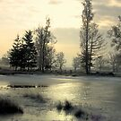 Wintermorning by the Lake by ienemien