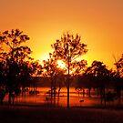 Aratula Sunrise by Beth  Wode