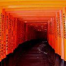Torii Gates - Fushimi Inari Shrine Kyoto by Melor