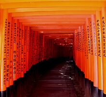 Torii Gates - Fushimi Inari Shrine Kyoto by Melor